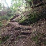 El sendero con escaleras