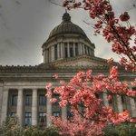 The Legislature Building in Tacoma WA (April 14, 2013)