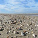 Egmond-Binnen, the beach