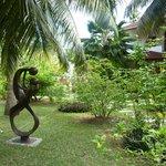 un jardin luxuriant