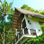 Our lovely garden villa