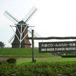 Ogo Green Flower Farm Foto