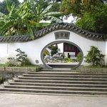 Banyan Garden