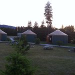 Yurts, better than cabins