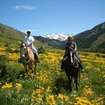 spring time in Wyoming
