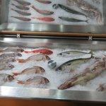 Make your selection of FRESH fish