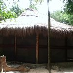 Cabaña Organic Yoga Akumal!