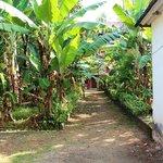Giardino Farm