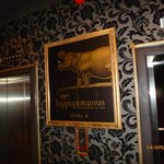 Ground Floor Museum Hotel foyer entrance to lift to restaurant