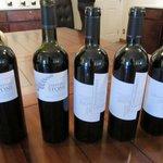 Wine and savour tour