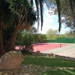 Foto de un trocito de jardín y pista de tenis