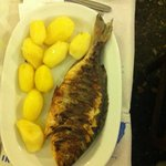 FRESH FISH OF THE DAY WITH BOILED PATATOES