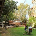 Garden & restaurant