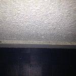 dirty skirting in toilet