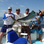 Guanacaste Billfish