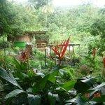 bush bar 2011