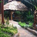 Coffee station hut
