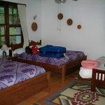 Jungle Lodge room (#5)