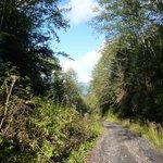 Gravel road to Mount Hays summit