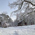 Snowy site!