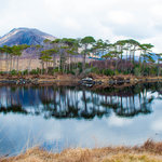 Connemara beauty