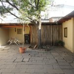 Segundo patio-Arbol