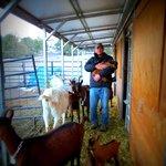 Eric cuddling a baby goat.