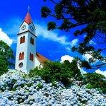 igreja e ortensia