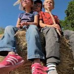 kids having a great time on the hay stack