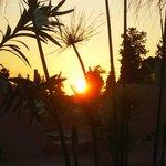 vue du coucher de soleil depuis la terrasse du riad Aloès