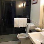 Bathroom, huge rain shower