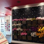 Very nice store