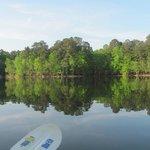 Beautiful Lake Wateree