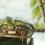 Foto de Rio Verde Floating Resto