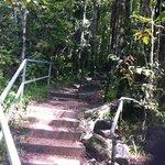 Steps into trail after bridge Mossman Gorge