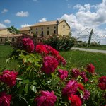 Photo of Agriturismo Millefiori - Corte delle Rose