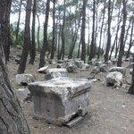 """ Offener Friedhof"""