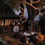 Sassa Bar Terrasse