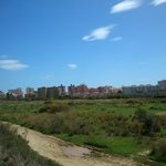 way to city, wasteland, but it is safe for walking