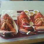 3 nice lunch lobsters