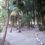 ballade sur l'atoll