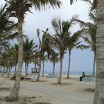 Beside the beach