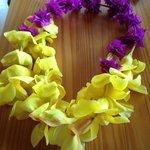 Colar de flores recebido na chegada ao aeroporto