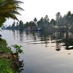 Morning view of the backwaters
