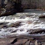 Turkey Creek Nature Preserve