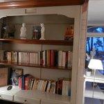 bibliothèque-salon