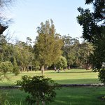 The adjoining golf course