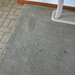 one of several stained areas in carpet