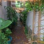 Walkway leading to courtyard/patio