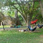 Descansando en las hamacas de Eno Costa Rica!